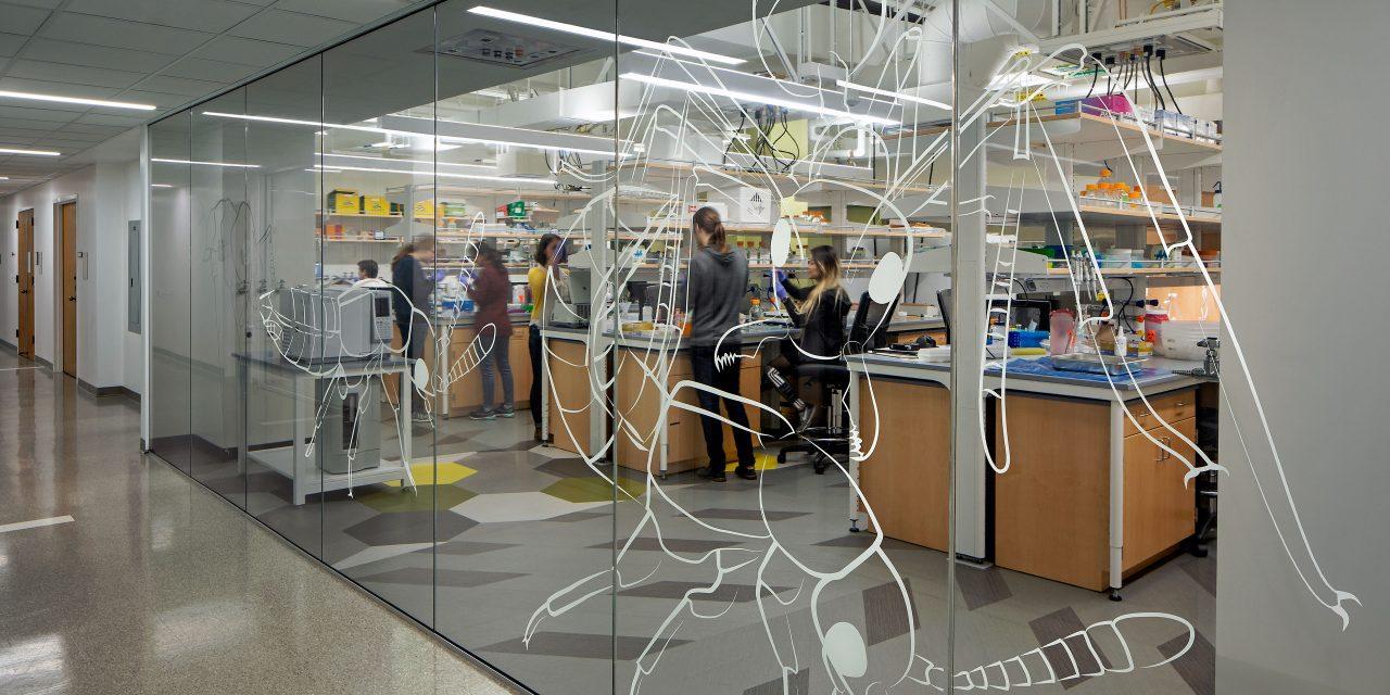 Parker Research Lab Renovation Planning