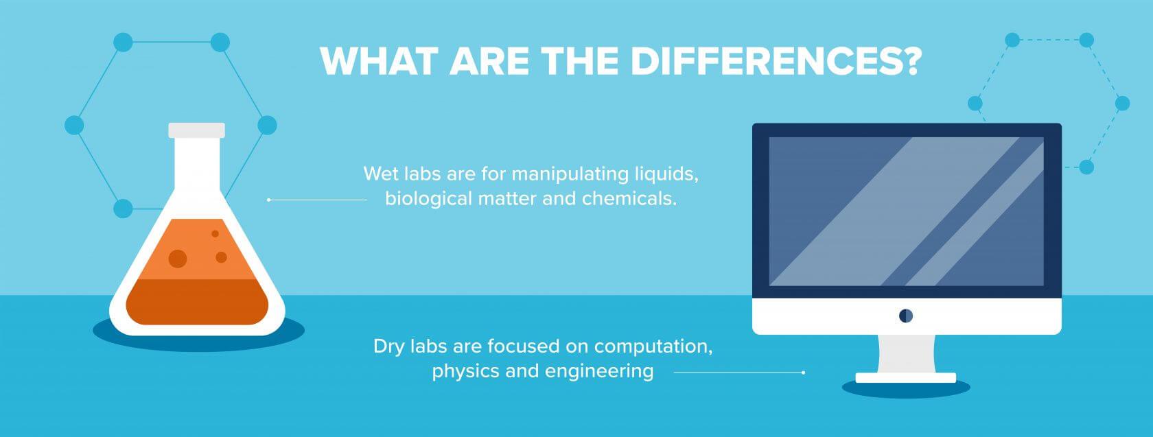 Wet Lab vs Dry Lab Differences